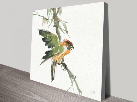 Formosan Firecrest Chris Paschke Canvas Prints Online Great Gift Ideas