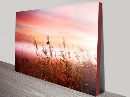 Grass Sunset Canvas Wall Print Sydney