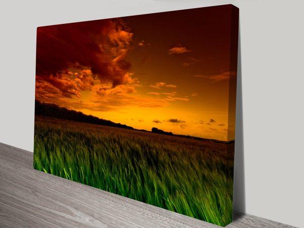 Green Fields Landscape Photo Art Australia