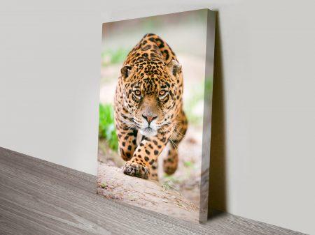 Hunting Jaguar Animal Wall Art on Canvas