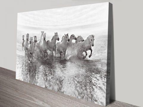 Illusion of Power Canvas Print