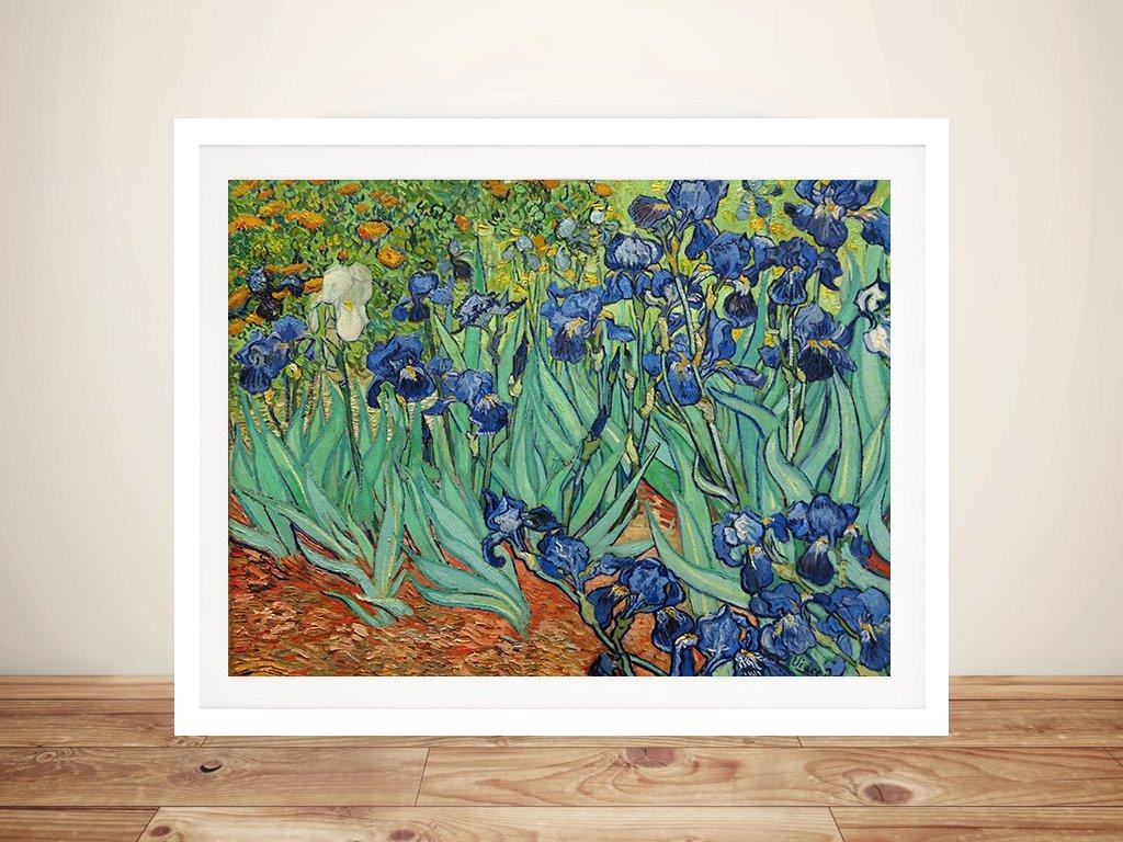 Irises By Van Gogh Canvas Print Melbourne Australia