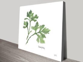 Italian Parsley Chris Paschke | Canvas Art Prints