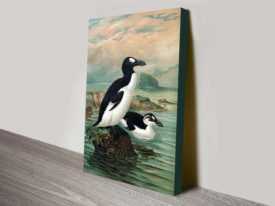 Great Auks John Gerrard Keulemans Seabird Reproduction Painting Print