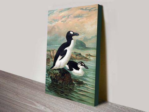 Great Auks John Gerrard Keulemans Seabird Reproduction Painting Print