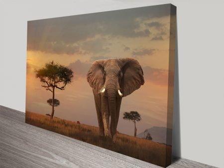 King of the Serengeti Photo Canvas Print