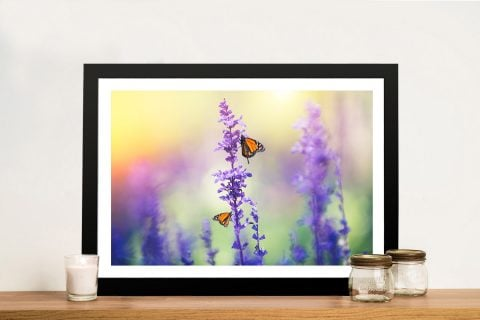 Lavender And Butterflies Canvas Photo Prints