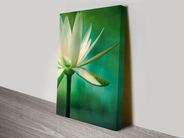 Lotus Flower Wall Print on Canvas