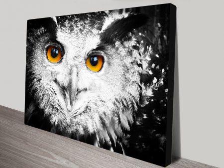 Owl Wall Art Print on Canvas