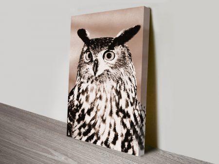 Owl Photo on Canvas Wall Art