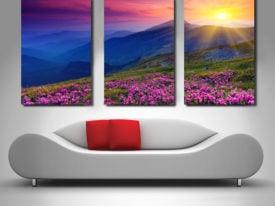 Pink fields triptych art set