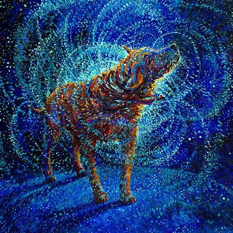Polarized Dog Iris Scott Canvas Wall Art