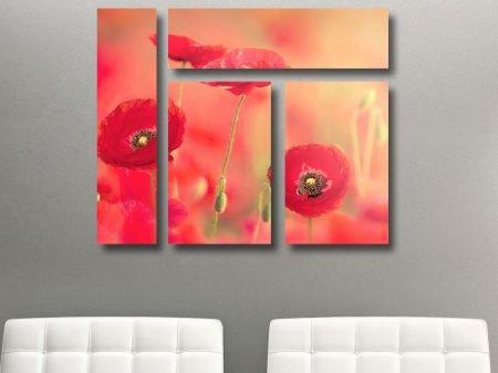 Poppy Dreams Mixed 4 Panel Canvas Print