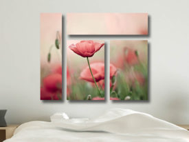 Poppy Haze Split Mixed 4 Panel Canvas Print