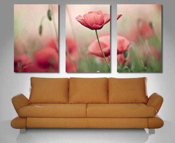 Poppy Haze Triptych Canvas Prints