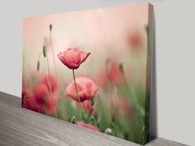 Floral Wall Art Prints