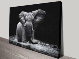 Power 1 canvas print