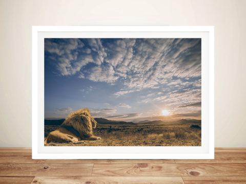 Regal Stare Lion Framed Wall Art