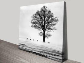 Roes-canvas-print