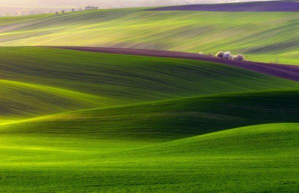 Rolling Hills Landscape Canvas Art Picture