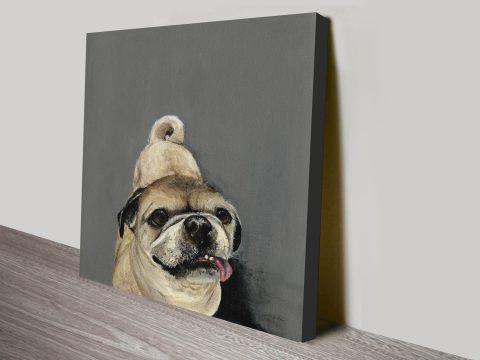 A Pug Called Jack