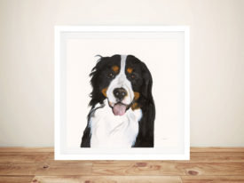 Barrett The Bernese Mountain Dog Canvas Wall