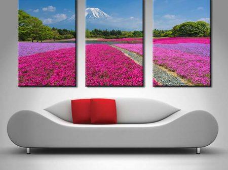 Shibazakura Flowers 3 Panel Split Canvas Prints