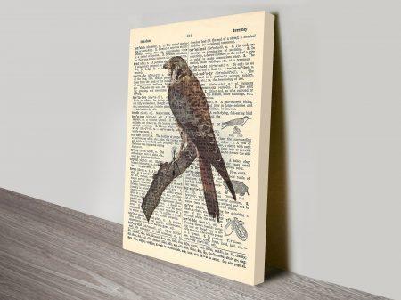 Sparrowhawk dictionary canvas wall art