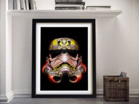 Star Wars Stormtrooper Canvas Posters Online Adelaide