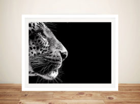 Stare of the Leopard Framed Wall Art Picture Australia