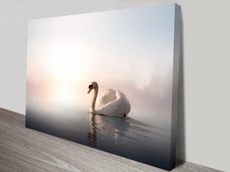 Majestic Swan Animal Wall Art on Canvas
