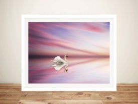 Swan at Sunset on Lake Photo Canvas Wall Art