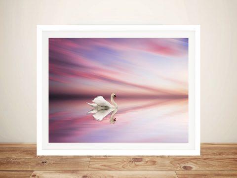 Swan at Sunset on Lake Photo Canvas Wall Art