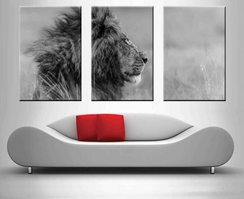 The Majestic King Lion 3 Panel