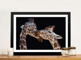 The Kiss Giraffe-Framed-Wall-Art