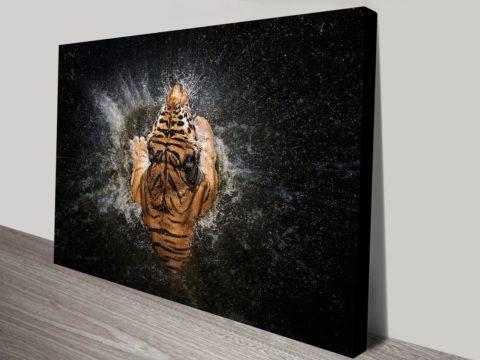Tiger splash canvas print art