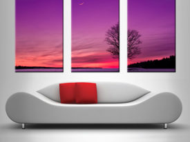 tree at dusk triptych wall art canvas print australia