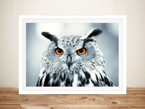 Snowy Owl Photo Canvas Art Prints