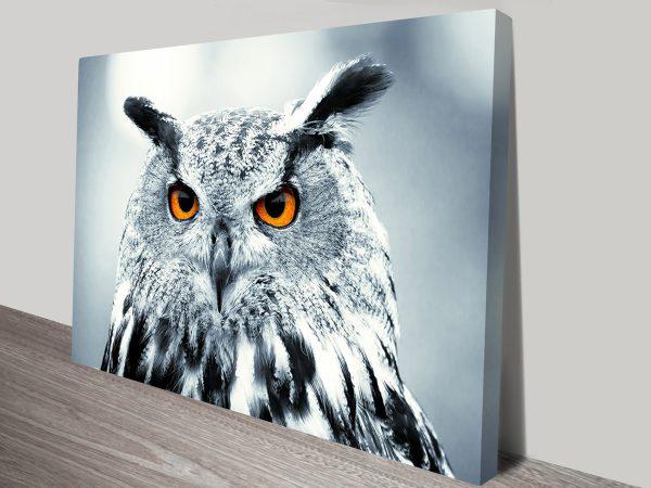 under observation owl canvas print