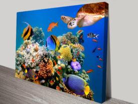 Coralscape Underwater scene art