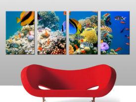 underwater quad panel on wall art print australia