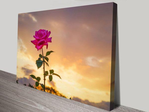 Buy Vigilent Rose Australian Wall Art