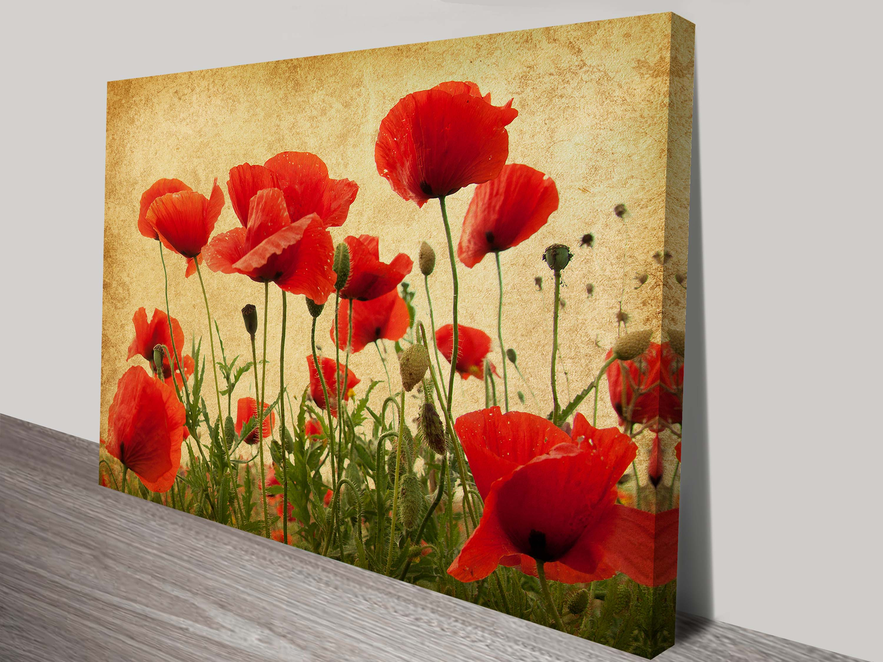 Vintage Floral Art on Canvas Prints of Poppies Flower Art | Poppy ...