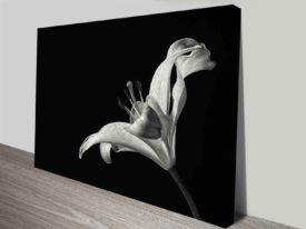 monochrome lily wall art canvas print