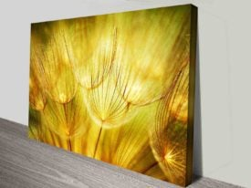 Dried Clematis Puffs canvas print wall art