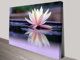 Floating Beauty Floral Wall Art