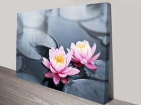 floating lotus flowers canvas art wall print