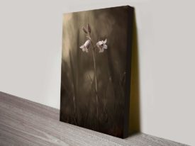 Bluebells in Soft Focus Photographic Floral Wall Art Australia