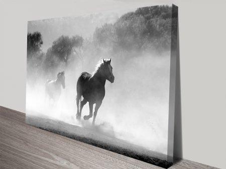 Galloping Grey Photo Canvas Prints