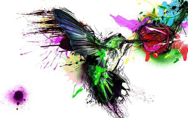 hummingbird watercolour wall art print on canvas